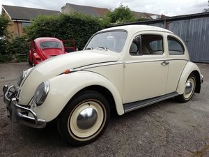 Immaculate 1963 beetle 1200 fully restored For Sale