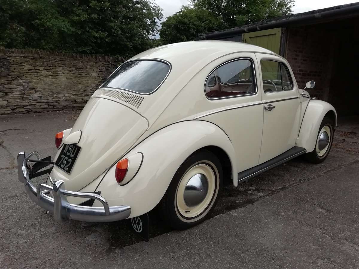 Immaculate 1963 beetle 1200 fully restored For Sale (picture 4 of 6)