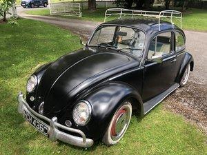 1965 Volkswagen Beetle Classic  For Sale