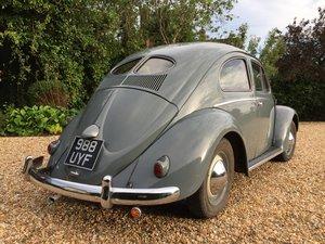 1953 Volkswagen Beetle 1952/53 Zwitter For Sale
