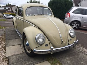 1957 OVAL BEETLE - from NZ For Sale