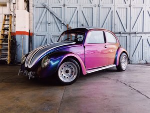 Joseph the Beetle (1971)  For Sale