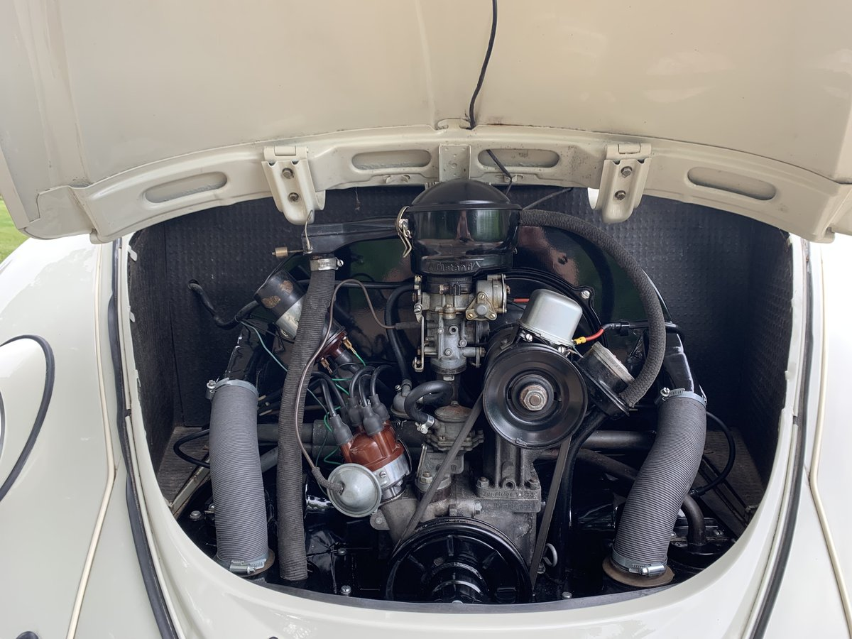 1965 Volkswagen Beetle 1200 Pearl White For Sale | Car And
