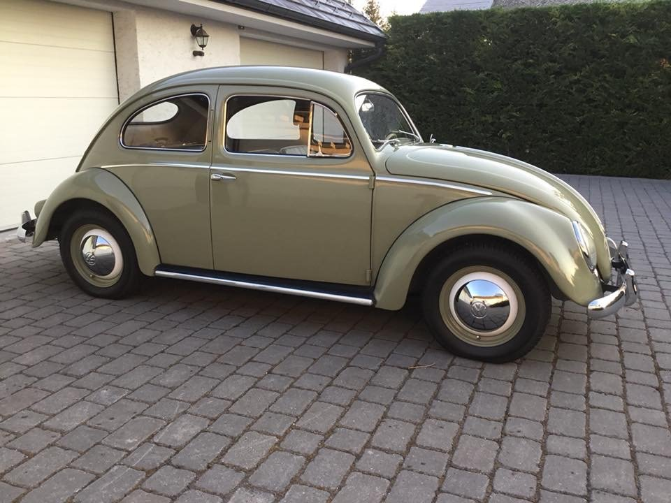1956 VW Beetle March Oval  For Sale (picture 5 of 5)