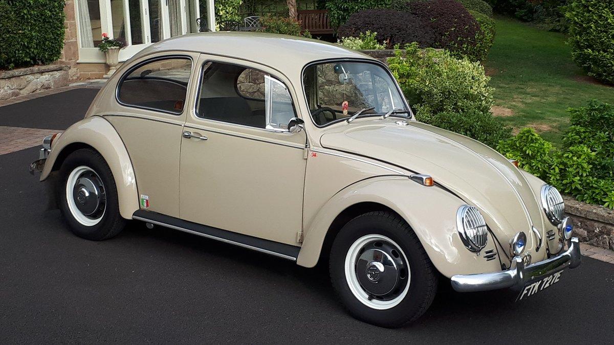 1967 Volkswagen beetle 1500 rhd For Sale (picture 1 of 6)