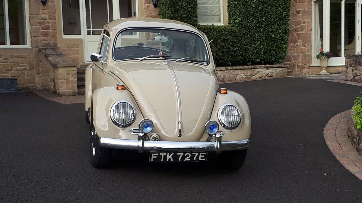 1967 Volkswagen beetle 1500 rhd For Sale (picture 2 of 6)