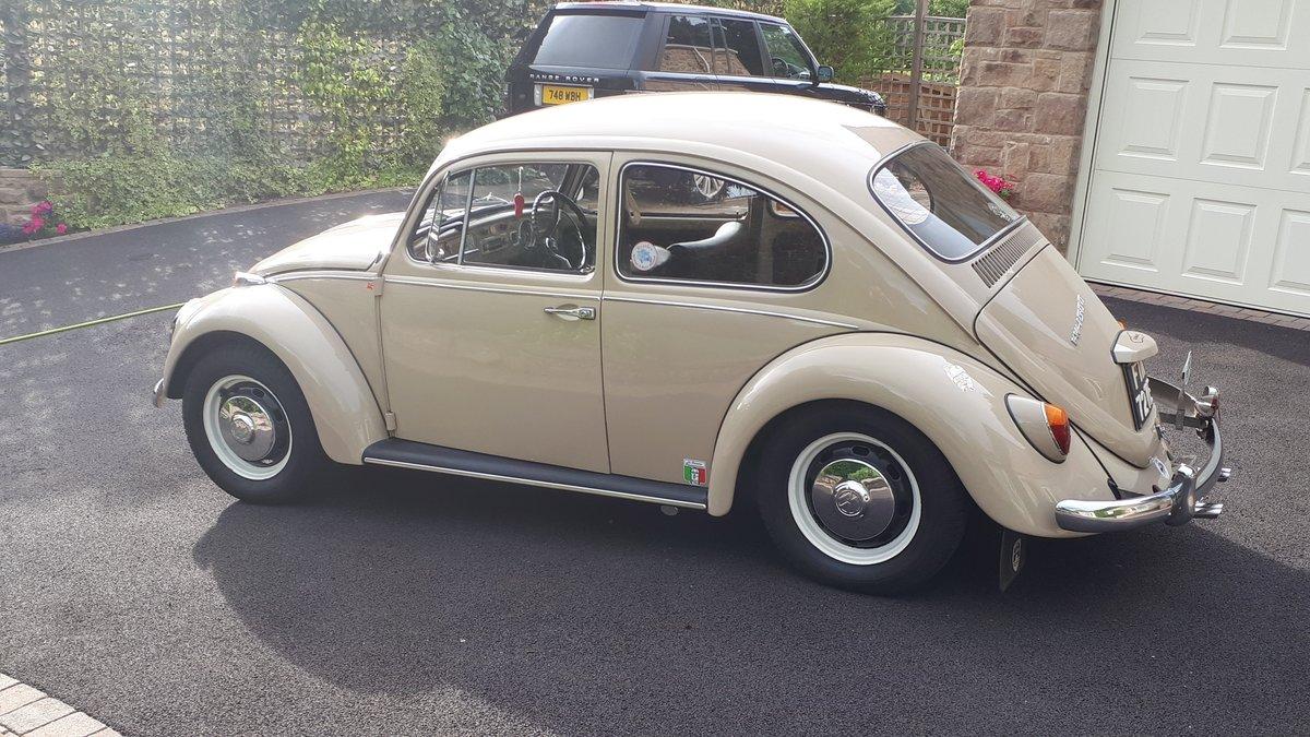 1967 Volkswagen beetle 1500 rhd For Sale (picture 3 of 6)