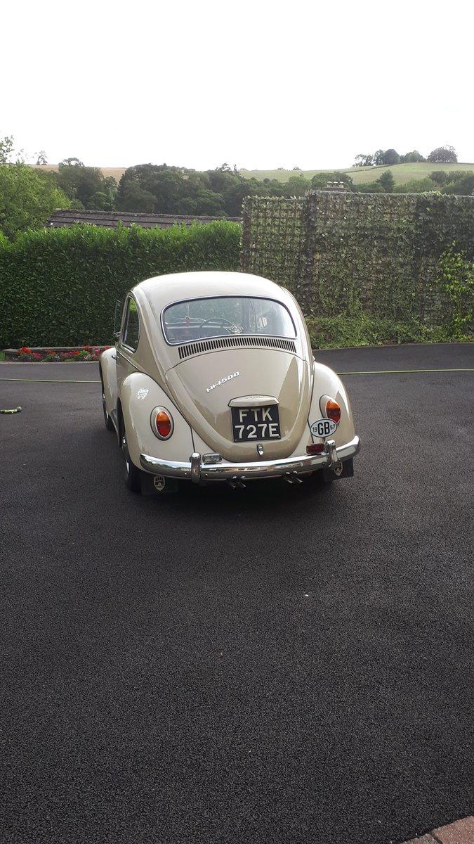 1967 Volkswagen beetle 1500 rhd For Sale (picture 4 of 6)