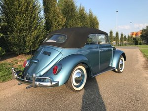bug convertible 1964 body off restored like new