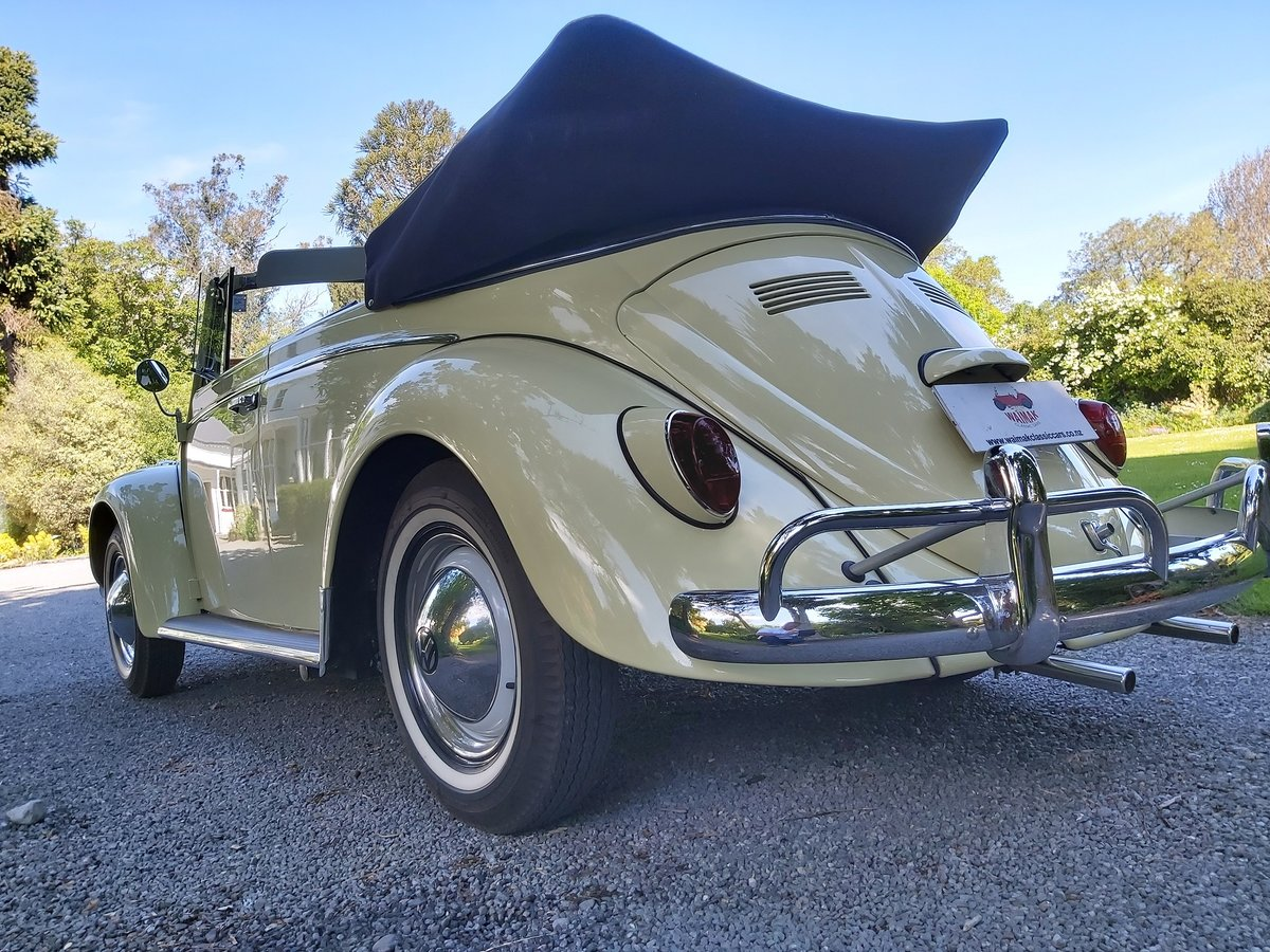 1965 Beetle Is This California Dreaming or What? For Sale (picture 5 of 6)