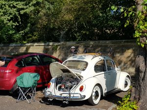 1967 Beetle stunning  For Sale