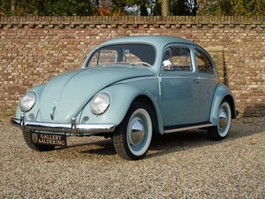 1956 Volkswagen Beetle Oval 'Ovali', fully restored condition, or For Sale