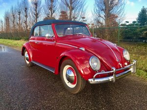 bug convertible 1962 red like new For Sale
