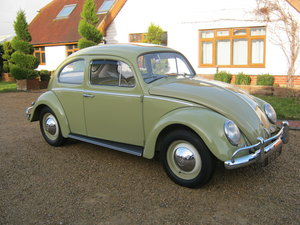 1959 VW BEETLE 1200. 1 OWNER FOR 58 YEARS. FULLY RESTORED.  For Sale