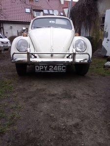 1965 Classic car VW Beetle 1200, RHD