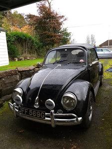 1969 Classic VW Beetle 1300, tax & Mot exempt (project)