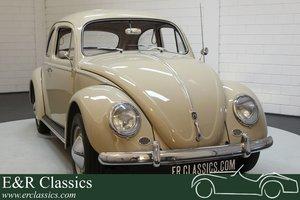 Volkswagen Beetle 1200 Dickholmer 1959 Restored