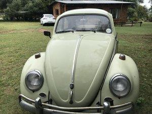 1960 VW Beetle Wolfburg