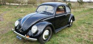 1950 Volkswagen Splitscreen Beetle, VW Bug, Volkswagen Kafer