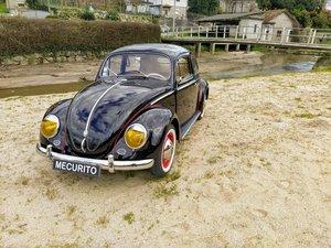 VW Carocha Oval - 1955