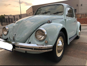 Beautiful Restored Beetle