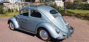 1956 Volkswagen Beetle, VW Kafer, VW V Beetle SOLD