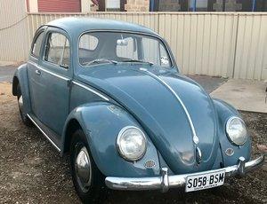 1959 Volswagen Beetle