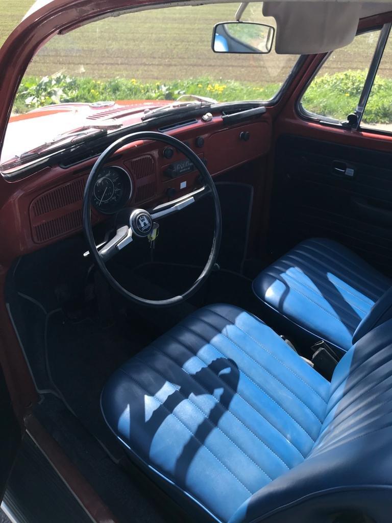 1966 Volkswagen Beetle Left Hand Drive For Sale (picture 5 of 6)