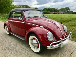 bug convertible 1962 red like new