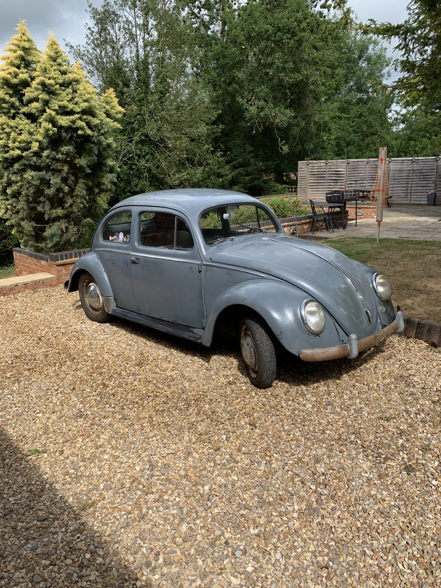 1955 Vw oval beetle standard  For Sale (picture 1 of 6)
