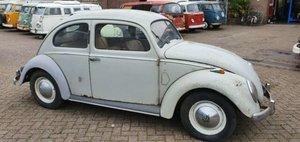 1952 Volkswagen Beetle, VW Kafer, VW V Beetle