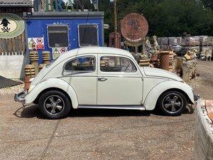 1963 Classic vw beetle