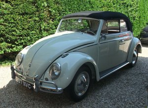 1959 Beetle Karmann Convertible For sale or trade