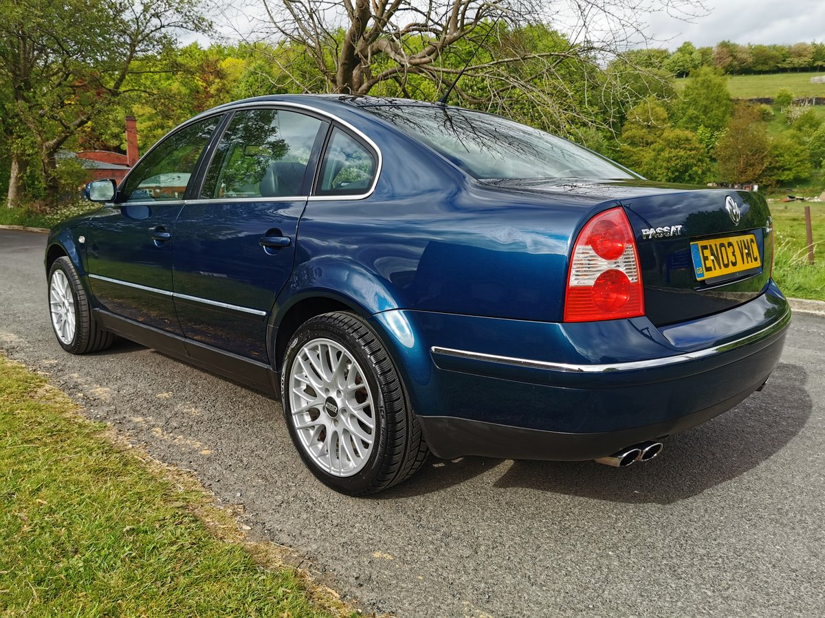 2003 Passat W8 4Motion Facelift - Dragon Green, FVWSH For Sale (picture 6 of 6)