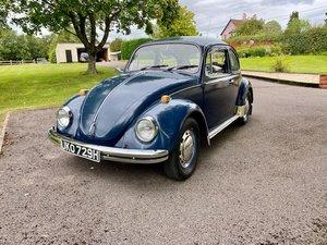 Beetle 1500