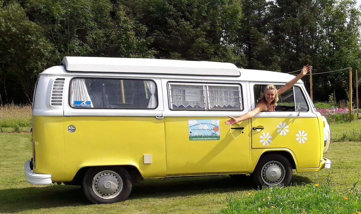 1979 'Daisybus' VW Type 2 Camper For Sale (picture 1 of 5)