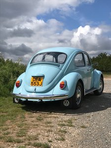 Picture of 1971 Incredible VW 1200 Beetle totally original
