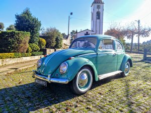 Picture of 1960 Volkswagen V.W/11 Limousine Luxe-Pele For Sale