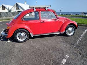 Volkswagen ( Mexican) Classic Beetle.