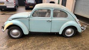 1 Owner VW Beetle