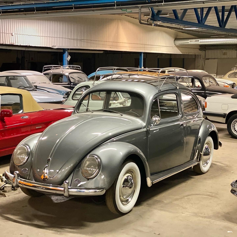 Swedish restored beetle / käfer