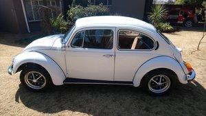 Immaculate, refurbished VW Beetle 1600S ( 1303s )