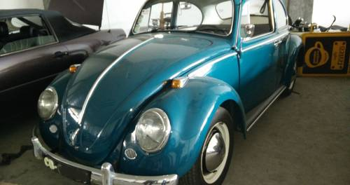 1964 VW Beetle For Sale (picture 1 of 6)
