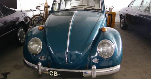 1964 VW Beetle For Sale (picture 2 of 6)