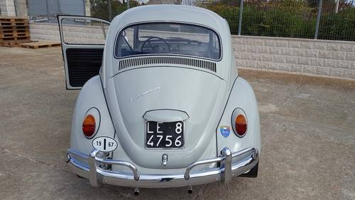 1967 Volkswagen Beetle For Sale (picture 3 of 6)