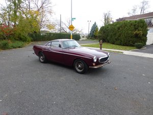 1967 Volvo P1800S LHD driver