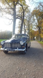 1965 Unique Volvo Amazon
