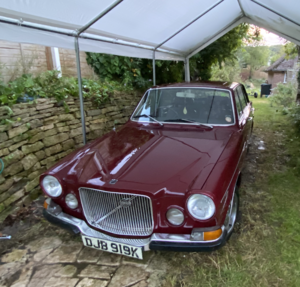Picture of 1971 Volvo 164