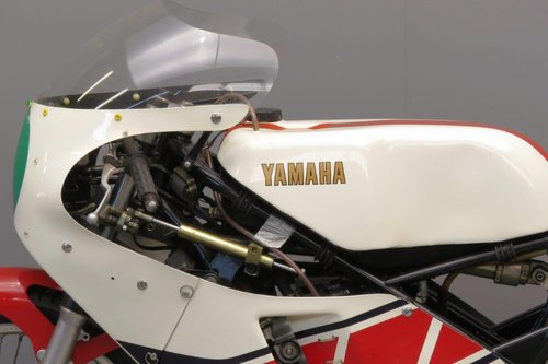 Yamaha 1981 TZ 250 racer SOLD (picture 6 of 6)