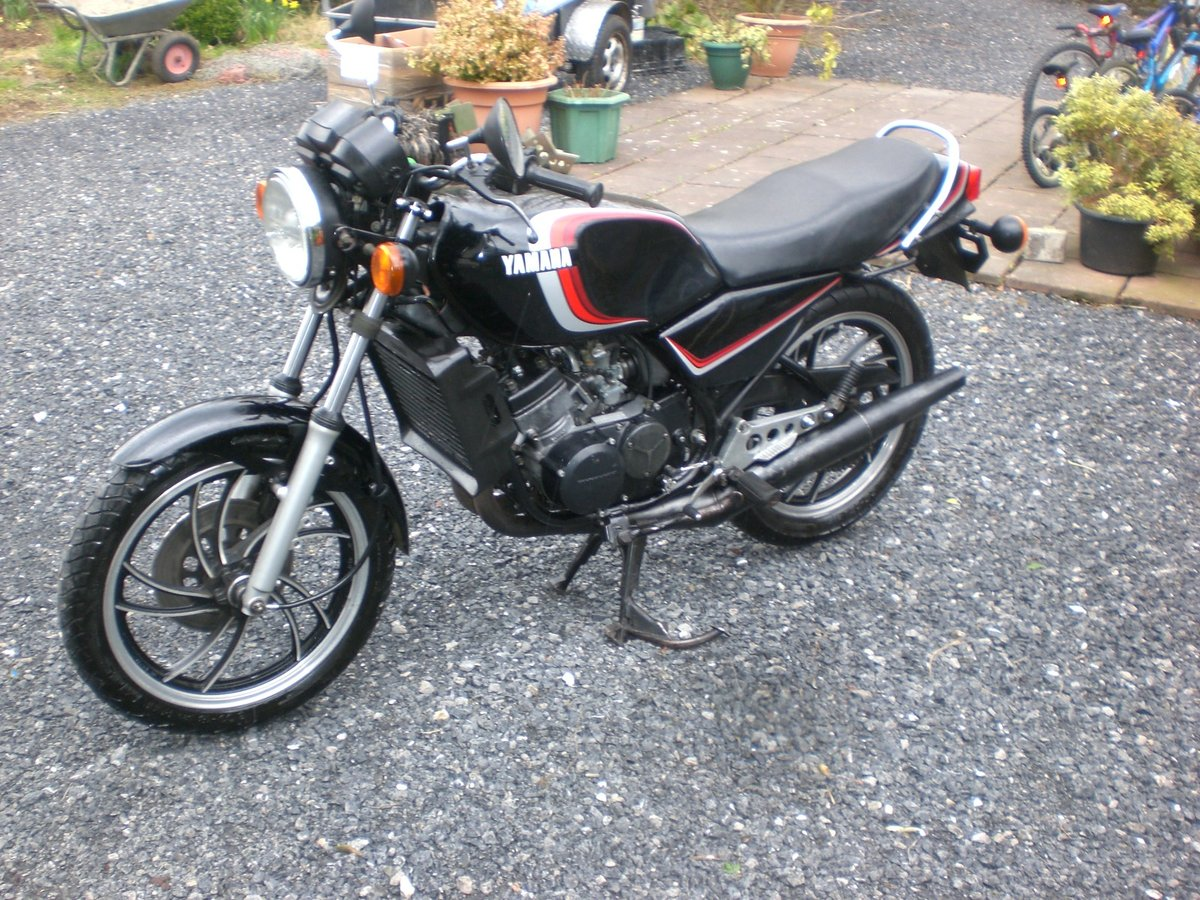 YAMAHA RD 250 LC 4 L1 1981  For Sale (picture 2 of 6)